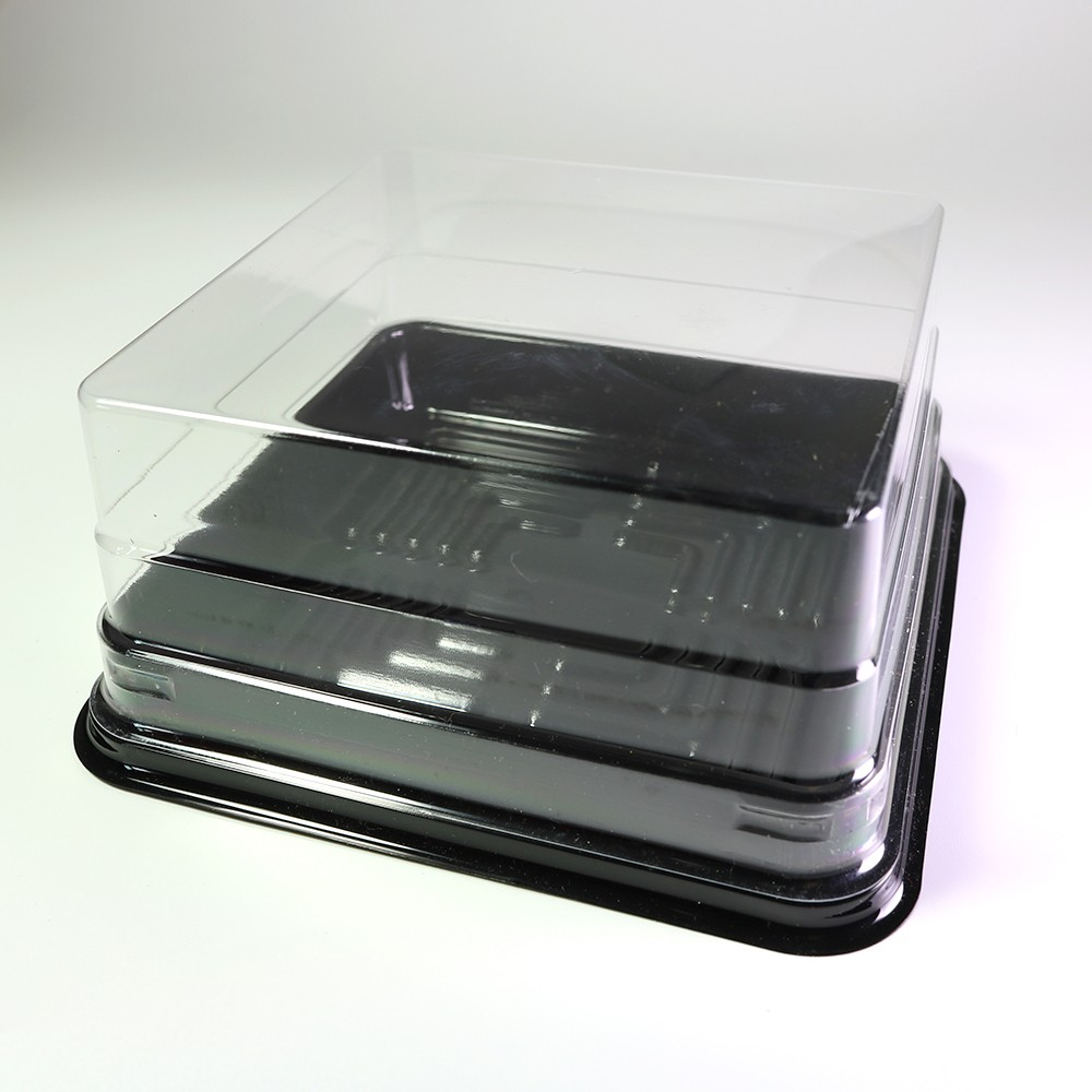 Square Black Based W Clear Plastic Lid Square Cake