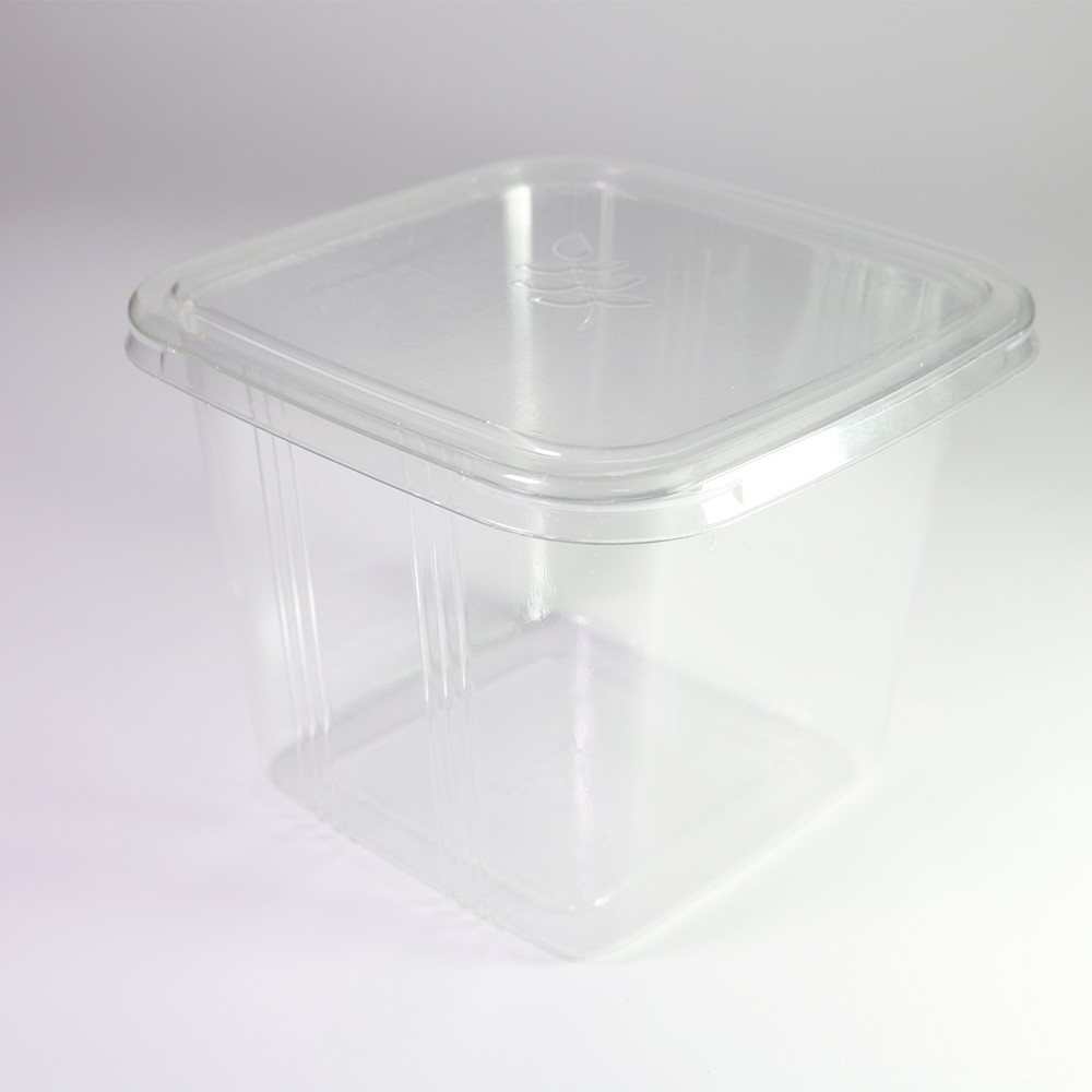 Square Deli Bakery Food Storage Container w/ Lids (600 Containers/Lot)