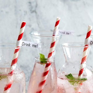 Paper Decorative Party Straw with Red Stripes (1750 Straws/Lot)