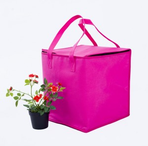 """Hot Pink Insulated Cooler Bags in Size 25 cm x 25 cm x 30 cm (9.75"""" x 9.75"""" x 11.75"""") (80 Cooler Bags/Lot)"""